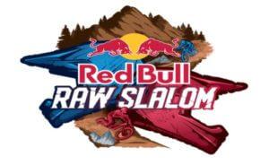 redbull raw ds